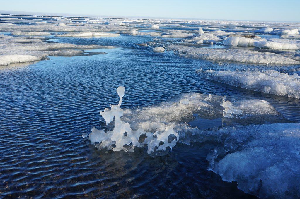 Ида - льды