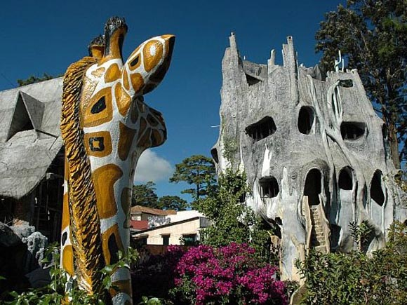 крейзи хаус - жираф