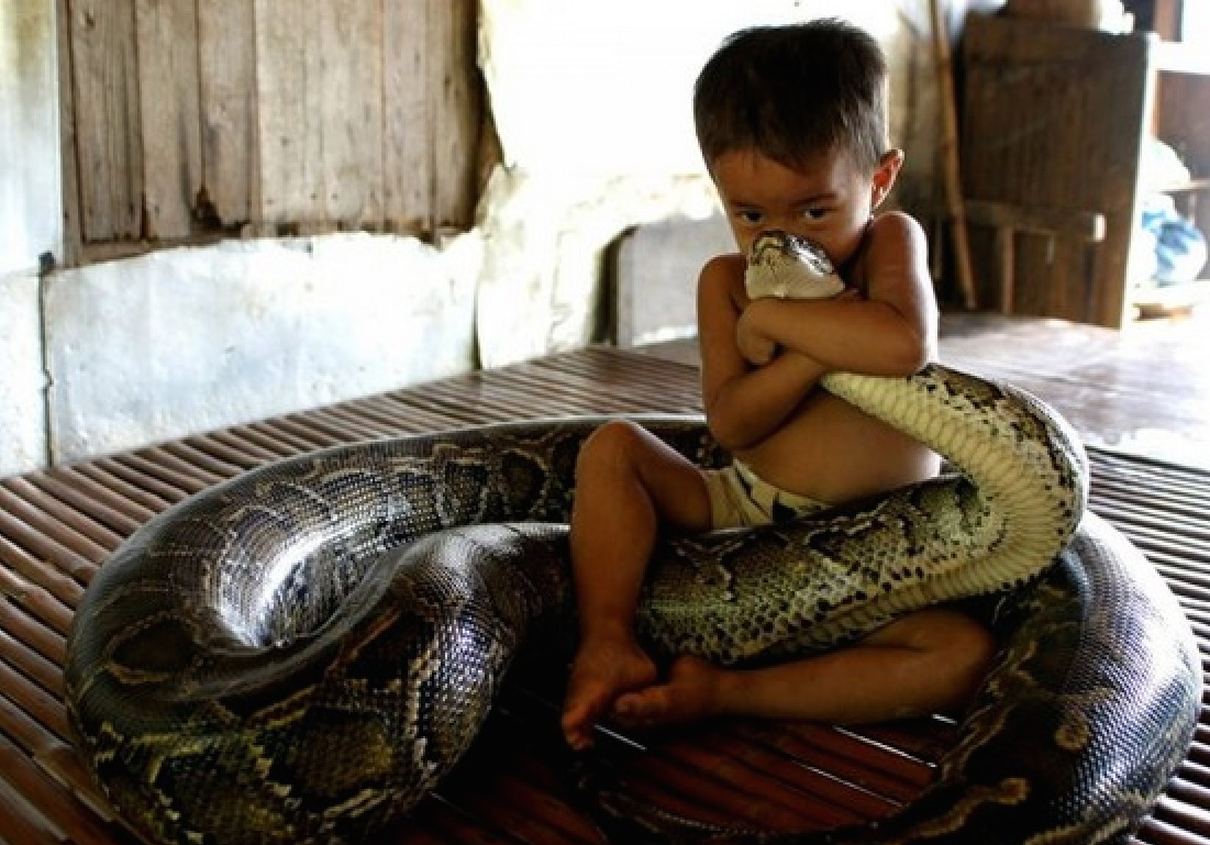 мальчик и змея - бест
