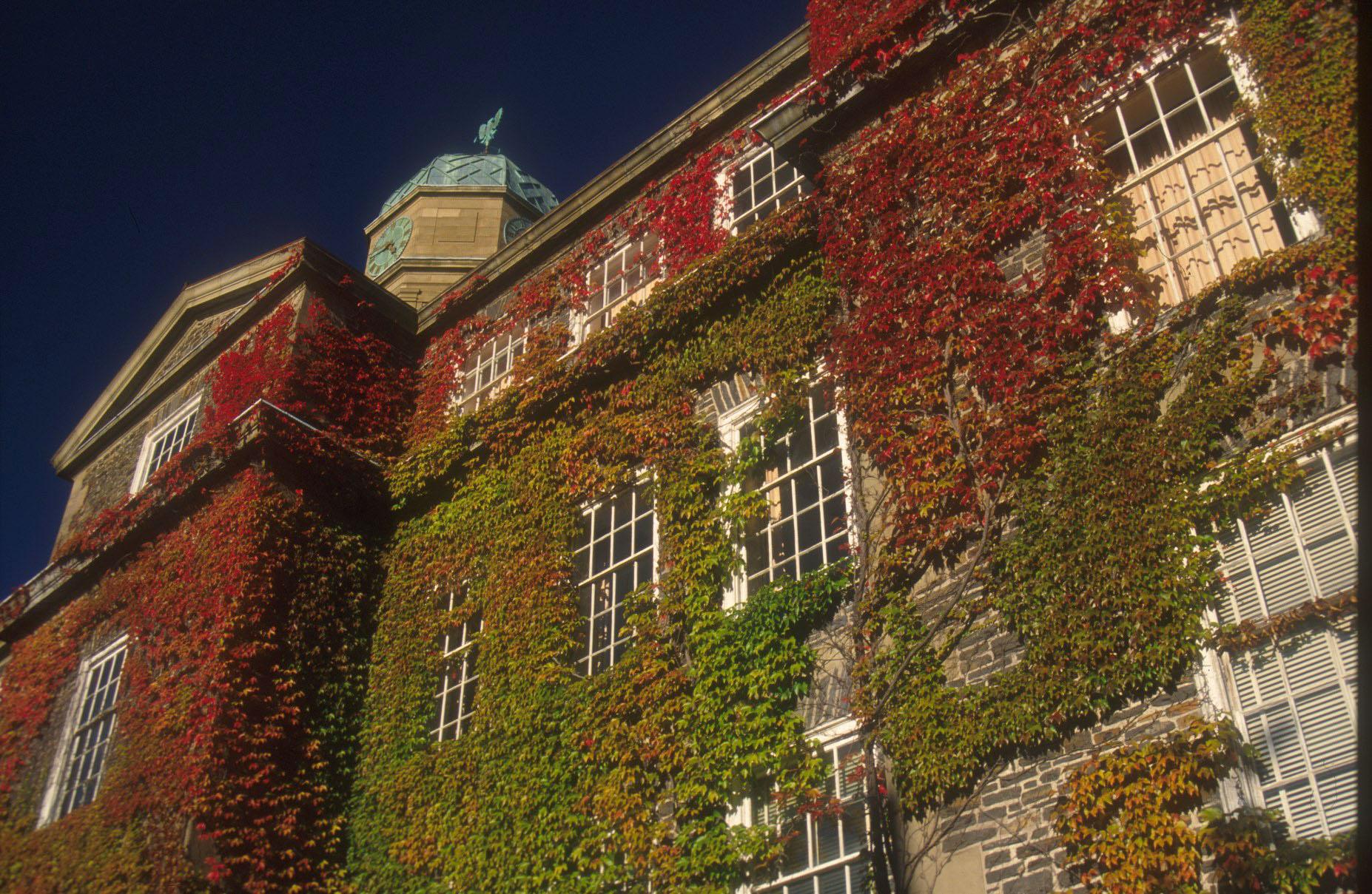 осень в архитектуре - горизонт