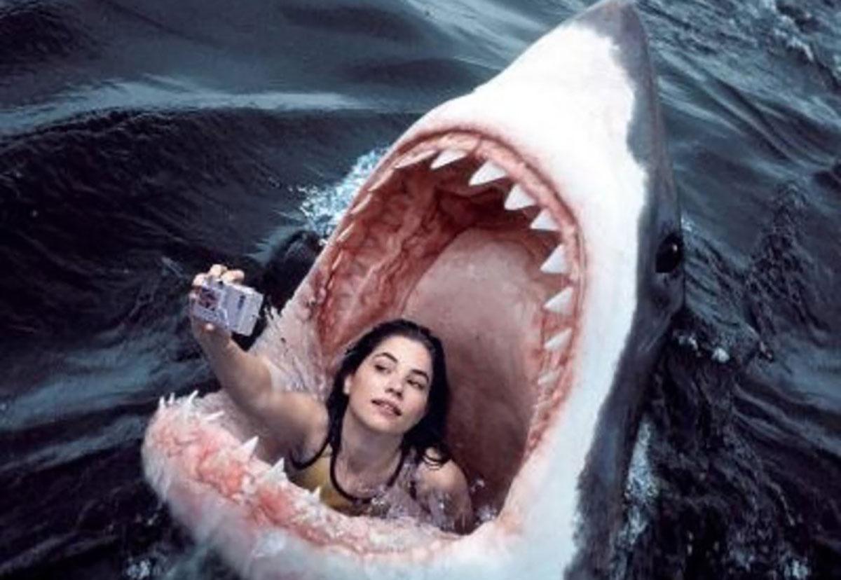 селфи - в пасти акулы