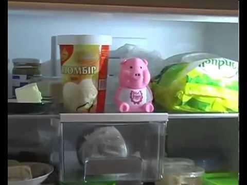 свинка-диетолог